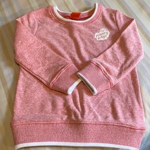 ⭐️NEW⭐️Sweatshirt for toddler